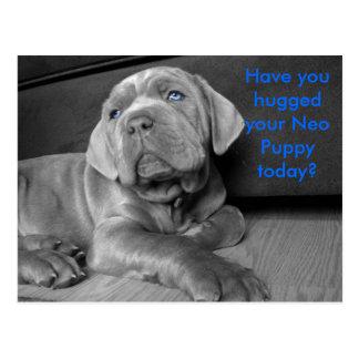 ¿Usted ha abrazado su perrito neo hoy? Tarjeta Postal