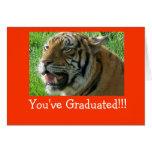 ¡Usted ha graduado!!! Tarjeta De Felicitación