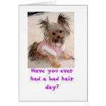 ¿Usted ha tenido nunca un mún día del pelo? Tarjeton