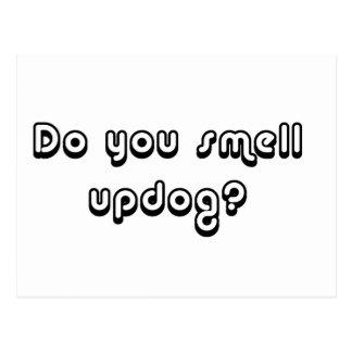 ¿Usted huele Updog? Postal