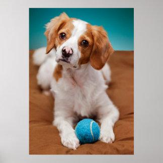 ¿Usted jugará la bola conmigo? Posters
