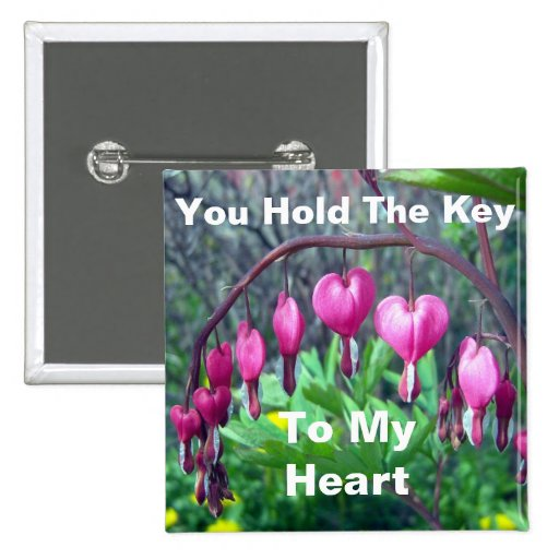 Usted lleva a cabo la llave a mi corazón pins
