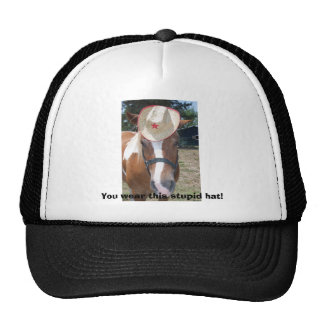 ¡Usted lleva este gorra estúpido!