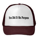 Usted lo hizo en propósito gorra