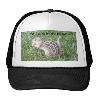 Usted me conduce Nuts Gorras