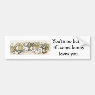 Usted no es ningún bunnytill algunos bunnyloves… pegatina para auto