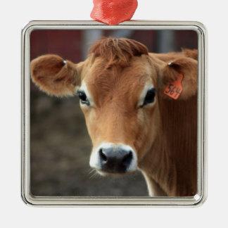 Usted no me piensa es vaca bonita del jersey adorno navideño cuadrado de metal