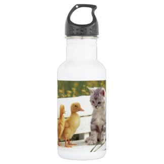 ¿Usted no parece un gatito? ¿Cuáles son usted? Botella De Agua
