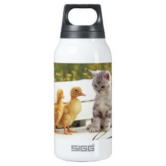 ¿Usted no parece un gatito? ¿Cuáles son usted? Botella Isotérmica De Agua