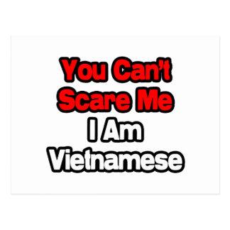 Usted no puede asustarme… vietnamita tarjetas postales