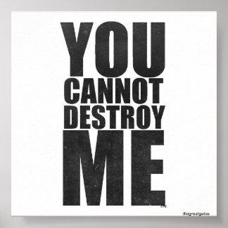 Usted no puede destruirme impresiones