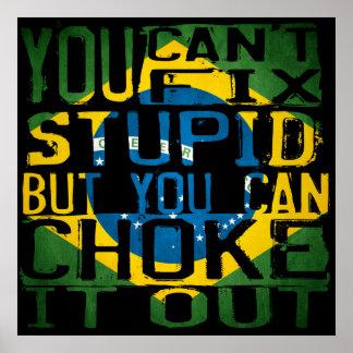 Usted no puede fijar estúpido, sino que usted póster