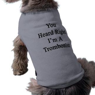 Usted oyó que a la derecha soy trombón playera sin mangas para perro