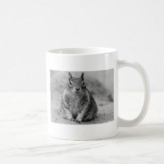 ¿Usted pedazo 'o del wanta yo? Tazas De Café