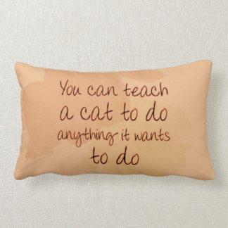 Usted puede enseñar a un gato a hacer cualquier co almohada