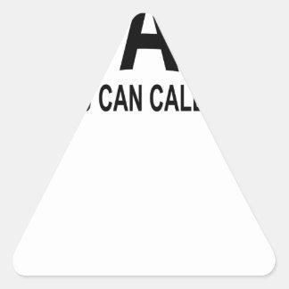 usted puede llamarme el coche T-Shirts.png Pegatina Triangular