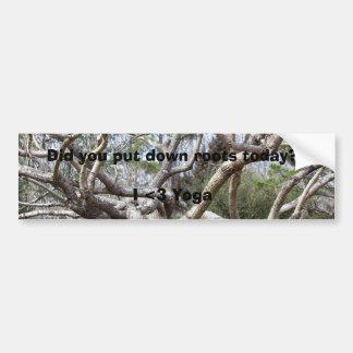 ¿Usted puso raíces en el suelo hoy Etiqueta De Parachoque