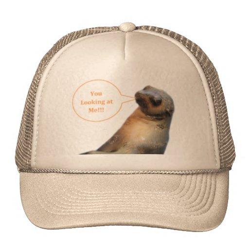 Usted que me mira gorras de camionero