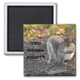 ¿Usted quiere luchar? Imán Cuadrado