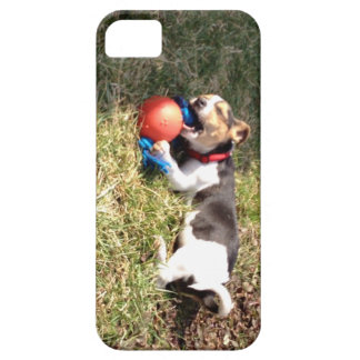 USTED SABE QUE USTED TIENE GUSTO iPhone 5 FUNDA