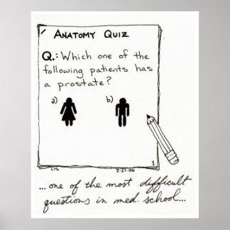 ¿Usted sabe quién tiene una próstata? impresión Poster