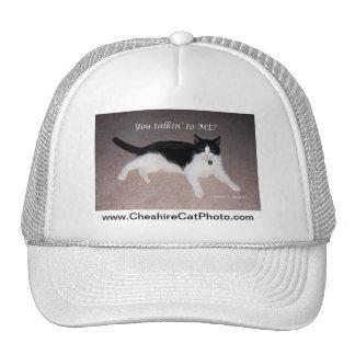 ¿Usted talkin a MÍ? Productos del gato de Californ Gorras