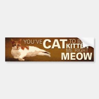 Usted tiene gato a ser pegatina del Mí-Parachoque Pegatina Para Auto