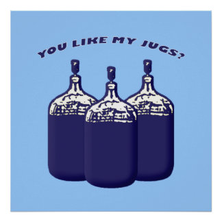 ¿Usted tiene gusto de mis jarros? Póster