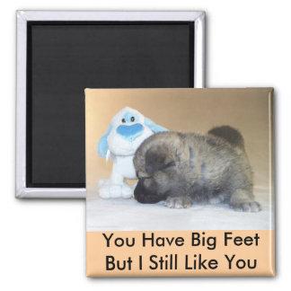 Usted tiene pies grandes imán cuadrado