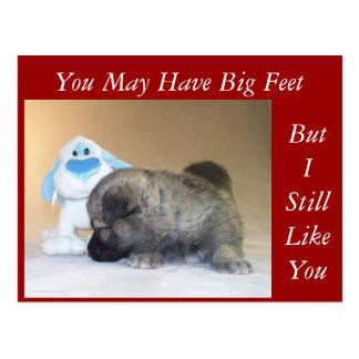 Usted tiene pies grandes tarjetas postales