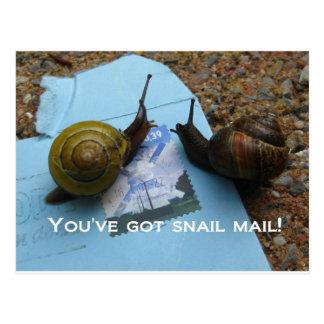 Usted tiene snail mail tarjeta postal