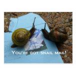 Usted tiene snail mail tarjetas postales
