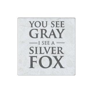 Usted ve gris, yo ve un zorro plateado imán de piedra