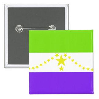 Usulutan El Salvador, Egypt flag Pinback Button