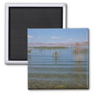 UT, Bear Lake 2 Inch Square Magnet