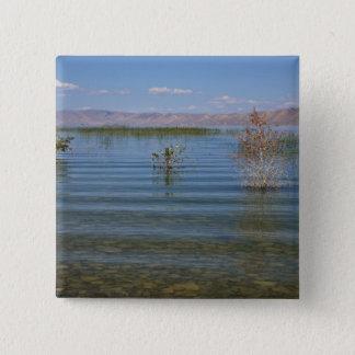 UT, Bear Lake Button