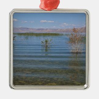 UT, Bear Lake Metal Ornament