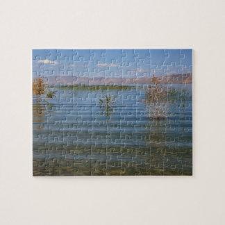 UT lago bear Puzzles Con Fotos