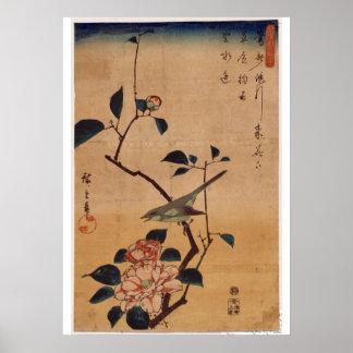 Utagawa Hiroshige, camelia y curruca de Bush, 1844 Póster