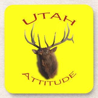 Utah Attitude Coaster