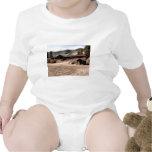 Utah Cabin Tee Shirt