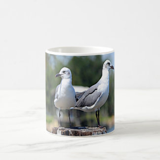 Utah California Gull Coffee Mug