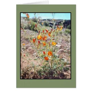 Utah Desert Wildflowers Note Card