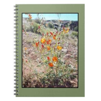 Utah Desert Wildflowers Notebook