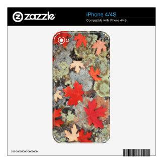 Utah, Fishlake National Forest. Patterns Skin For iPhone 4