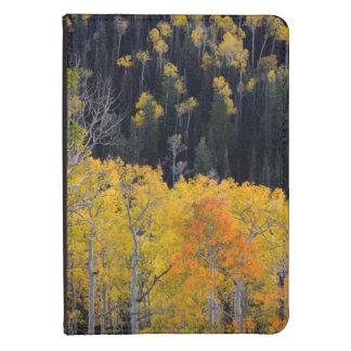 Utah. LOS E.E.U.U. Árboles de Aspen en otoño en el Funda De Kindle Touch