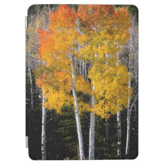 Utah, los E.E.U.U. Árboles de Aspen (Populus Cover De iPad Air