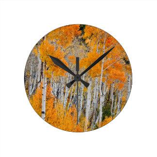 Utah, los E.E.U.U. Árboles de Aspen (Populus Relojes De Pared