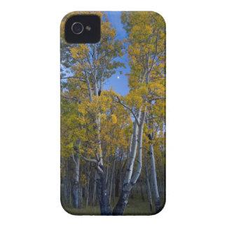 Utah. LOS E.E.U.U. Árboles y luna de Aspen en la Case-Mate iPhone 4 Carcasa