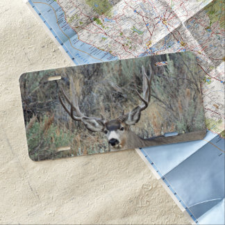 Deer Hunting License Plates Zazzle